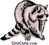 Raccoon Vector Clip Art picture