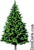 spruce tree Vector Clipart picture