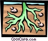 tree roots Vector Clipart picture