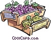 wine grapes Vector Clip Art picture