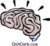human brain Vector Clipart image