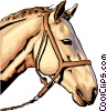 Vector Clip Art picture  of a White Horse