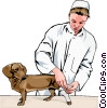 vet bandaging dog's leg Vector Clipart illustration
