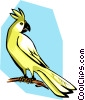 Vector Clipart picture  of a cockatoo