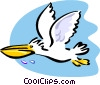 pelican Vector Clipart graphic