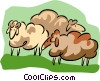 sheep Vector Clipart illustration