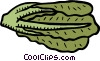 Vector Clip Art picture  of a leaf lettuce