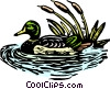 Vector Clipart image  of a mallard duck