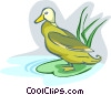 Vector Clip Art picture  of a duck