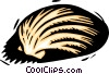 Vector Clipart picture  of a seashell
