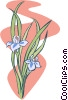 Vector Clip Art image  of a two flowers