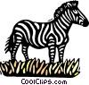 Vector Clip Art image  of a zebra