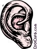Vector Clip Art image  of a woodcut ear