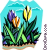 tulips Vector Clip Art picture