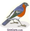 Vector Clip Art image  of a Colorful robin