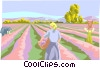 Female farmers picking crops Vector Clipart illustration