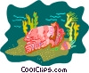 Vector Clip Art graphic  of a sea life