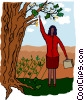 Vector Clip Art image  of a woman picking money off a tree