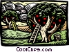 Fruit picking Vector Clipart picture