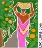 woman harvesting fruit from an orchard Vector Clip Art picture