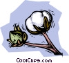 cotton plant Vector Clipart graphic