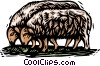 farm scene, sheep Vector Clipart picture