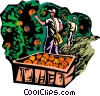 Vector Clipart image  of a picking fruit