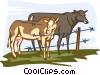 cows Vector Clipart illustration