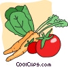fresh vegetables Vector Clip Art picture