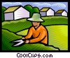 trimming a hedge Vector Clip Art picture