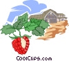 Vector Clip Art graphic  of a raspberry farming