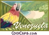 Venezuela, country Vector Clip Art picture