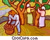 Vector Clip Art picture  of a People picking fruit