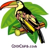 Vector Clip Art picture  of a parakeet