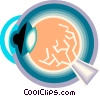Vector Clip Art image  of a eyeball