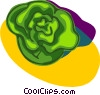 Vector Clip Art picture  of a lettuce