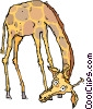 giraffe Vector Clipart illustration