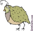 Vector Clipart image  of a partridge