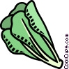 Vector Clip Art image  of a romaine lettuce