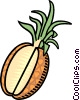 pineapple Vector Clipart picture