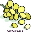 Vector Clipart illustration  of a green grapes