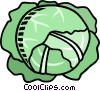 lettuce Vector Clipart illustration