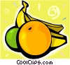 Fruit, apple, banana, orange Vector Clipart graphic