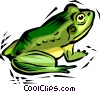 frog Vector Clipart illustration