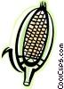 cob of corn Vector Clipart picture