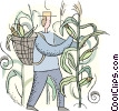 farmer picking cobs of corn Vector Clip Art picture