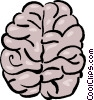 brain Vector Clip Art graphic