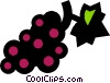Vector Clip Art picture  of a grape bunches