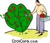 Vector Clip Art graphic  of a man picking flowers