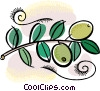 olive branch with olives Vector Clipart image